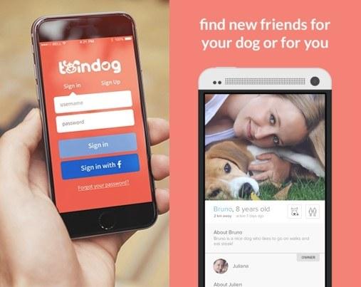 ingreso de la app twindog