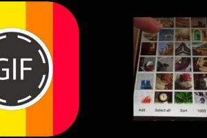 logo y galería de la aplicacion para hacer gif gif maker - video to gif