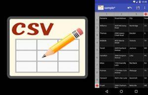 logo y tabla creada en csv editor