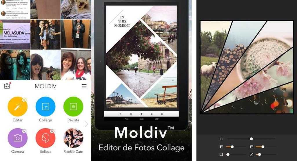 opciones de trabajo en la app moldiv