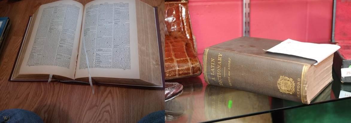 diccionario real lewis and short